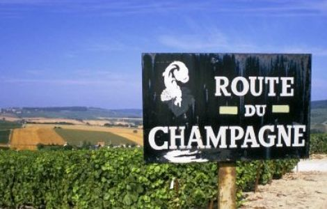 Taste of Champagne bike tour