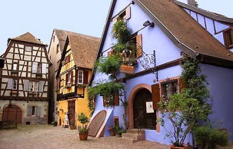 BEST OF Alsace Walk