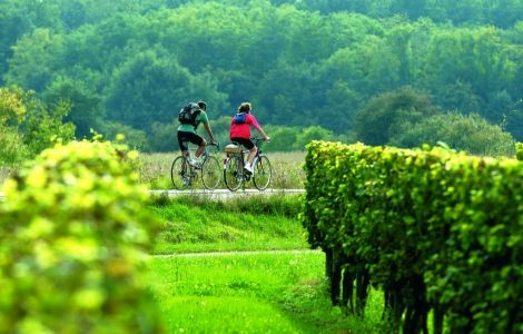 TASTE OF Bordeaux Bike Tour