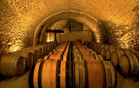 PASSION OF Burgundy Wine Tour
