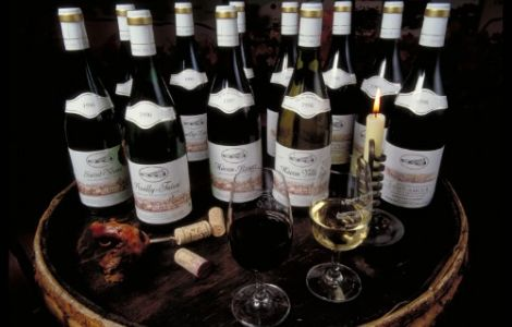 Burgundy GOURMET Wine Tour
