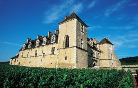 BEST of Burgundy Walking tour